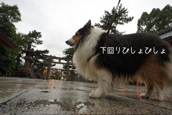 062207.jpg