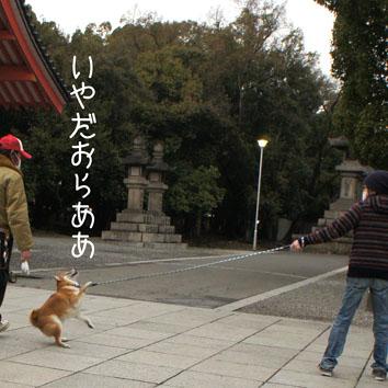 07_20120318002418.jpg