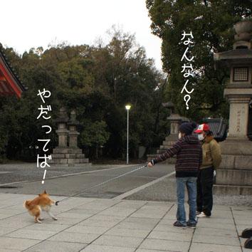 08_20120318002219.jpg