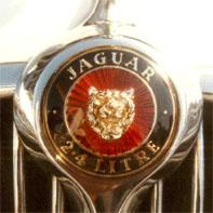 jaguar のコヒ#12442;ー