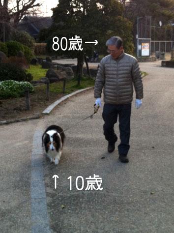 90VS10.jpg