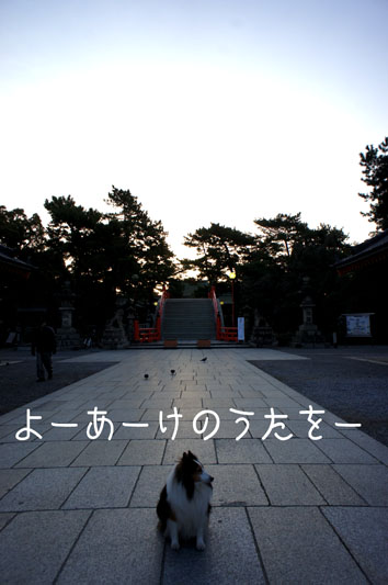 DSC00126_16960.jpg