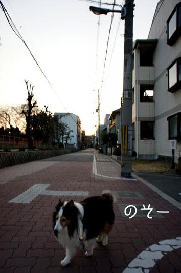 DSC00281_17144.jpg