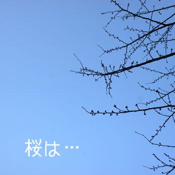 DSC00282_17145.jpg