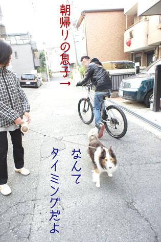 DSC01335_1880.jpg