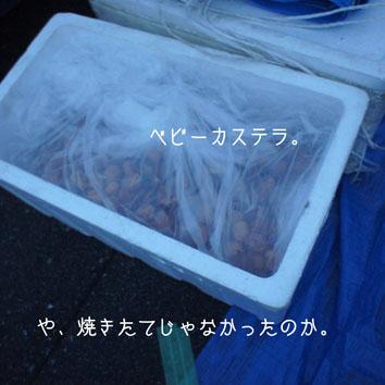 DSC01461_36142.jpg