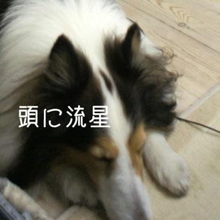 DSC02045_3014.jpg