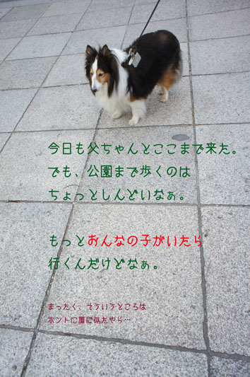 DSC02294_24025.jpg