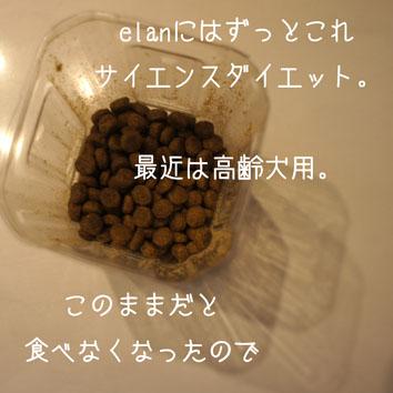 DSC02472_24203.jpg