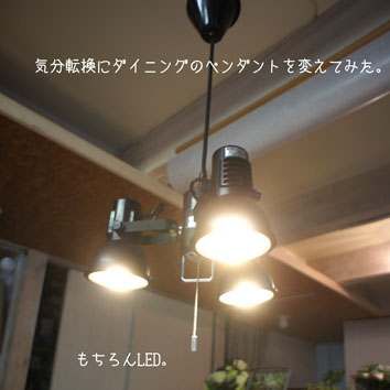 DSC02652_24413.jpg