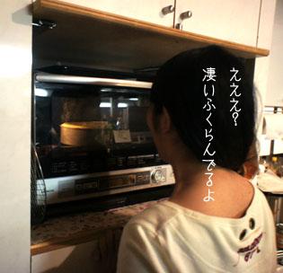 DSC03961_5357.jpg