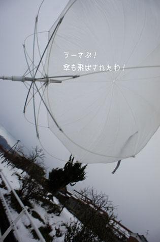 DSC04719_6139.jpg