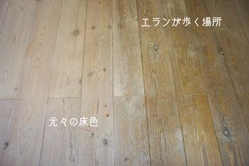 DSC04724_20214.jpg