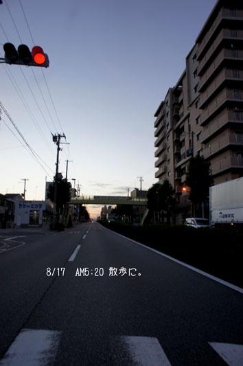 DSC04959_26804.jpg