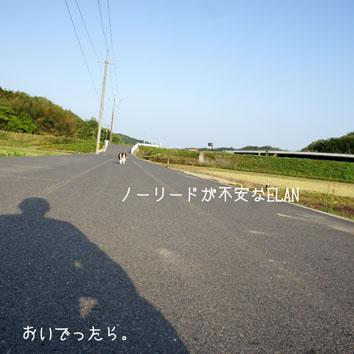 DSC04980_20470.jpg