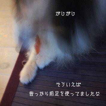 DSC05185_27029.jpg
