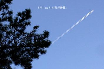 DSC05212_27056.jpg