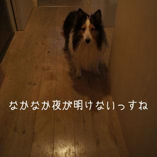 DSC05781_7210.jpg