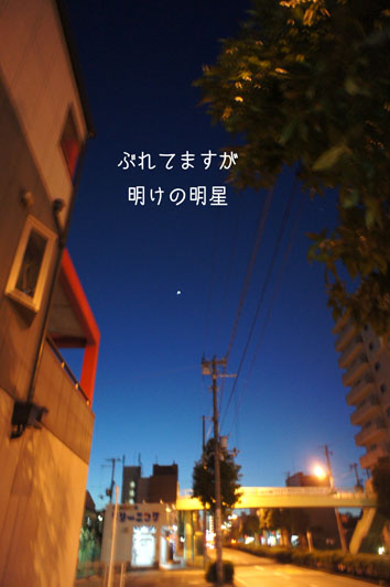DSC05846_27726.jpg