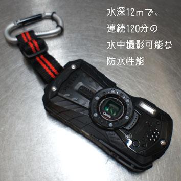 DSC08448_32052.jpg