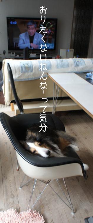 DSC08860_15522.jpg