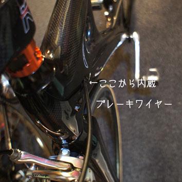 DSC09716_33588.jpg