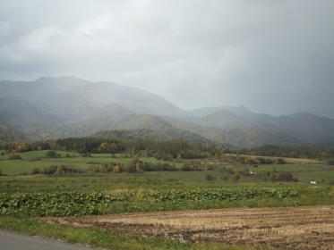 富良野の秋1