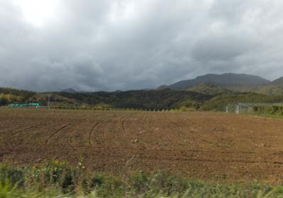 富良野の秋2