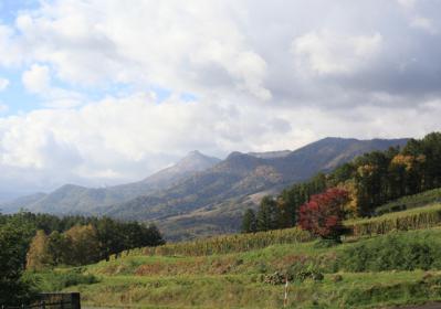 富良野の秋6