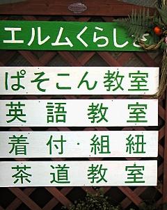 2011-01-01_1.jpg