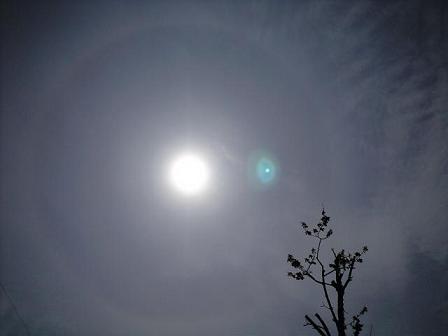 100426太陽の輪っか 2