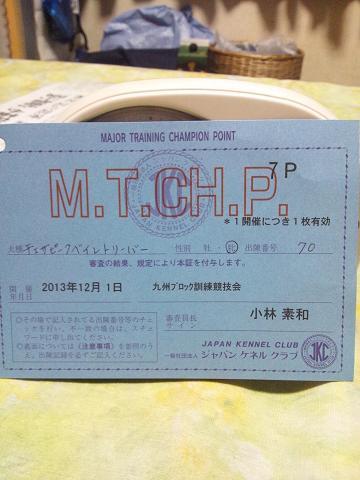 20131201 九州ブロック服従CDⅢポイントカードコピー