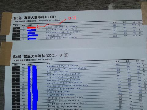 20131201 九州ブロック服従CDⅢ結果表コピー