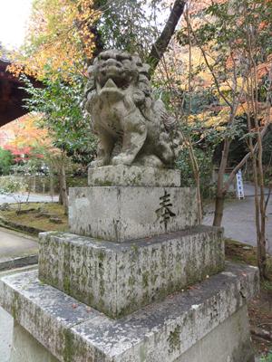 神峯山寺狛blog01