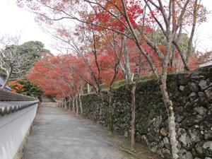 神峯山寺blog02
