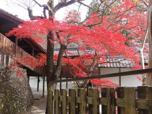 神峯山寺blog08