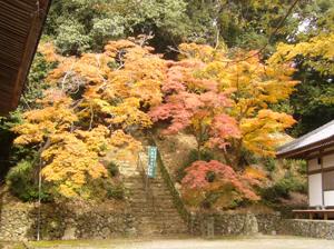 神峯山寺blog09
