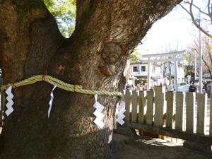 石切神社blog05