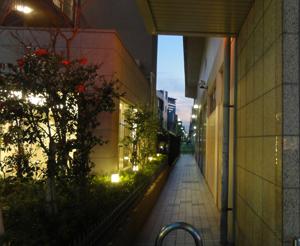 2012.2.16抜け道blog01
