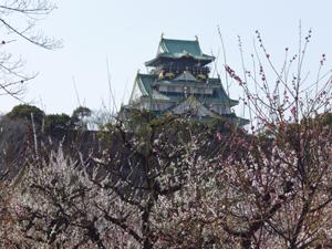 2012.3.21大阪城梅林blog03