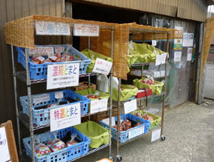 寺本農園blog01
