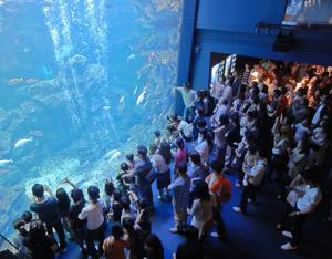 京都水族館blog05