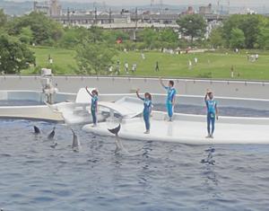 京都水族館blog15