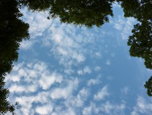 2012.9.3雲blog03