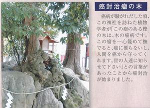 薭田野神社blog03