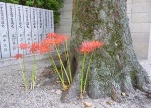 2012.9.28野見神社blog01