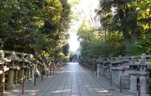 男山石清水八幡宮blog07