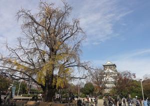 大阪城blog04