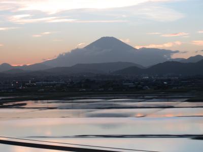 東海道新幹線車窓
