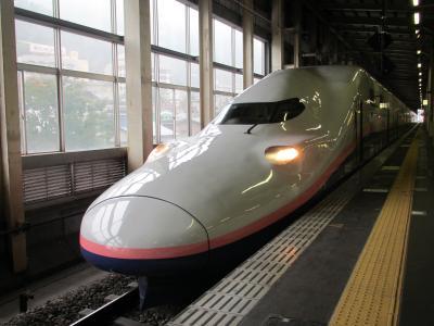 Maxたにがわ越後湯沢駅1